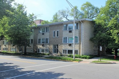 Forest Park Condo/Townhouse For Sale: 7231 Randolph Street #1A
