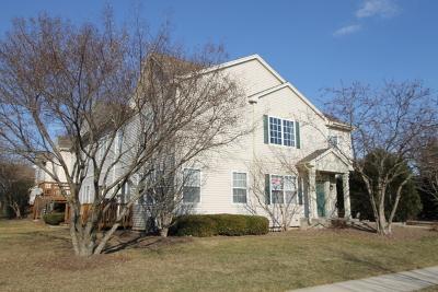 Hoffman Estates Condo/Townhouse For Sale: 6098 Delaney Drive #53-1