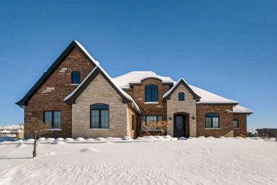 Mokena Single Family Home For Sale: 18585 South Buckberry Lane