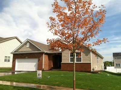 Romeoville Single Family Home For Sale: 729 North Misty Ridge Drive