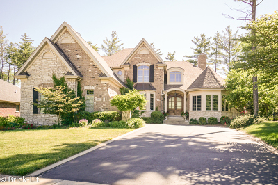 Mokena Single Family Home For Sale: 20007 White Pine Court