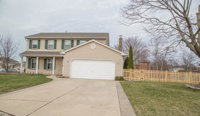 Schaumburg Single Family Home For Sale: 811 Long Meadow Drive