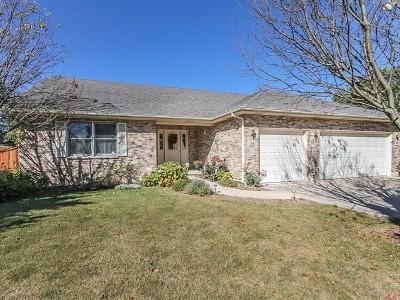 South Elgin Single Family Home For Sale: 18 East Lynn Street