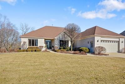 Batavia Single Family Home For Sale: 2423 Big Woods Drive