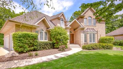 Homer Glen Single Family Home Price Change: 16141 Wildwood Lane