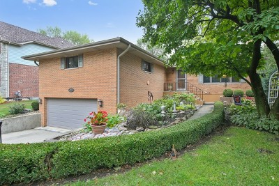 Downers Grove Single Family Home For Sale: 3935 Elm Street