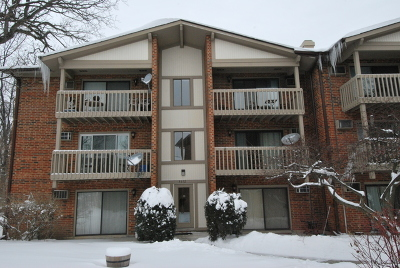 Lisle Condo/Townhouse For Sale: 2372 Abbeywood Drive #F