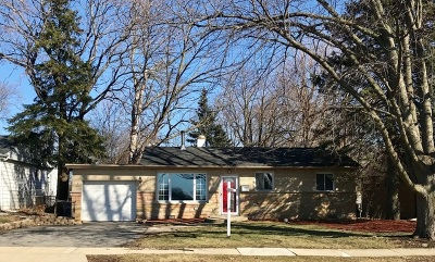 Downers Grove Single Family Home For Sale: 6309 Dunham Road