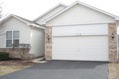 Romeoville Single Family Home Price Change: 729 Wellston Lane