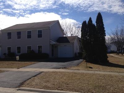 Hanover Park Condo/Townhouse New: 4734 Whitney Drive