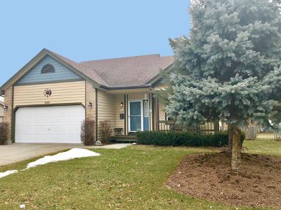 Carpentersville Single Family Home For Sale: 239 Oak Avenue