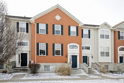 Elgin Condo/Townhouse For Sale: 272 Comstock Drive