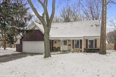 Lisle Single Family Home For Sale: 4409 Shabbona Lane