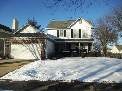 Elgin Single Family Home For Sale: 1140 Little Falls Drive