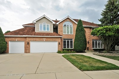 Naperville Single Family Home For Sale: 3144 Treesdale Court