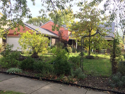 Naperville Single Family Home New: 1360 West Jefferson Avenue