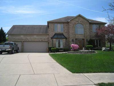 Naperville Single Family Home For Sale: 1606 Valley Ridge Court