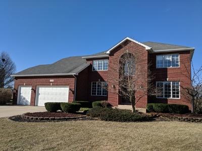 Plainfield Single Family Home New: 13256 Sunderlin Road