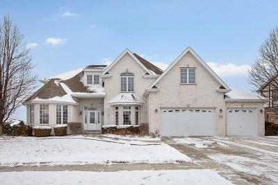 Mokena Single Family Home For Sale: 11438 Stratford Road