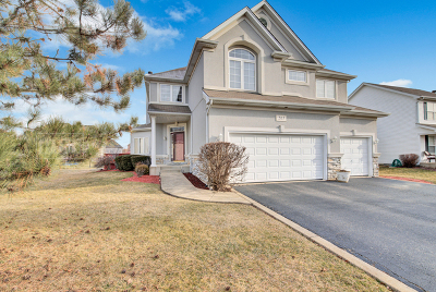 Oswego Single Family Home For Sale: 265 Morgan Valley Drive