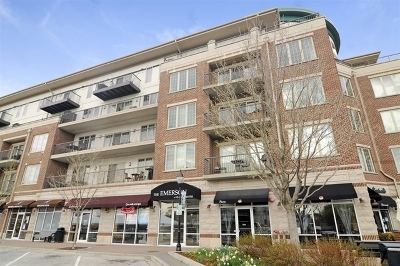 Mount Prospect Condo/Townhouse For Sale: 100 South Emerson Street #212