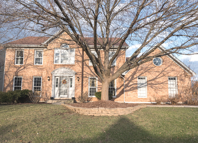 Naperville Single Family Home For Sale: 303 West Bailey Road