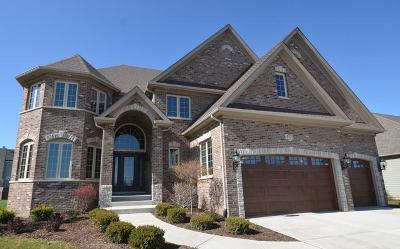 Naperville Single Family Home New: 20 Pinnacle Court