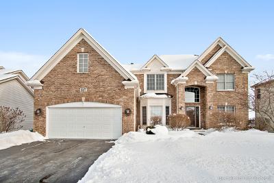 Oswego Single Family Home For Sale: 227 Long Beach Road