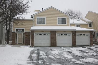 Streamwood Condo/Townhouse New: 107 Winchester Drive #B