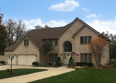 Schaumburg Single Family Home For Sale: 715 Greenbriar Lane