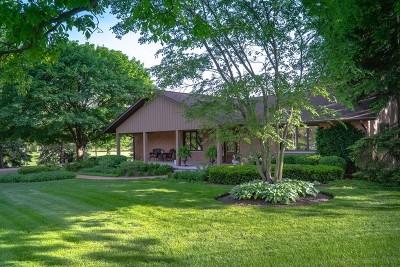 Sugar Grove Single Family Home For Sale: 43w485 Thornapple Tree Road