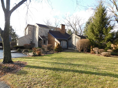 Naperville Single Family Home For Sale: 8s526 Bell Drive