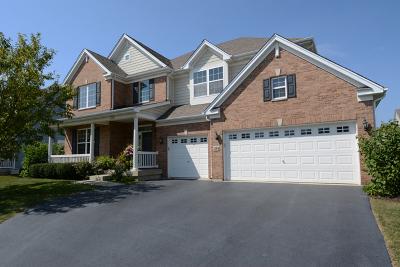 Elgin Single Family Home New: 334 Buffalo Drive