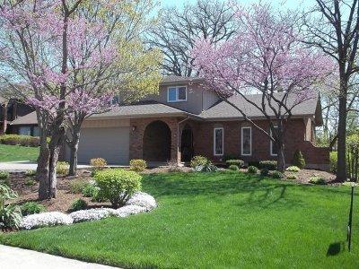 New Lenox Single Family Home New: 30 Warren Avenue