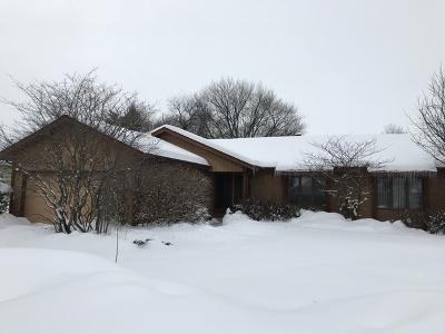 Elgin Single Family Home New: 176 North Lyle Avenue