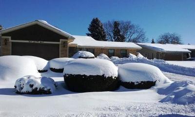 Bloomingdale Single Family Home For Sale: 377 Meadowlark Road