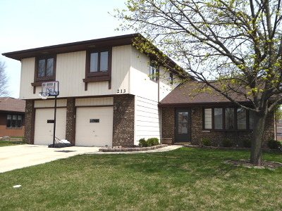 Schaumburg Single Family Home New: 213 South Knollwood Drive