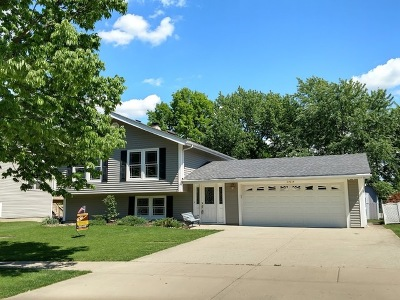 Bloomingdale Single Family Home For Sale: 309 Plymouth Lane