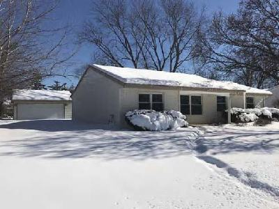 Schaumburg Single Family Home For Sale: 305 South Springinsguth Road