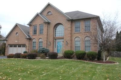 Oswego Single Family Home New: 540 Arbor Lane