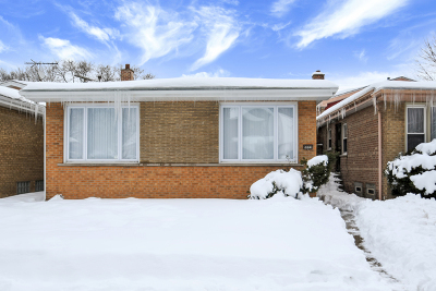 Chicago IL Single Family Home New: $255,000