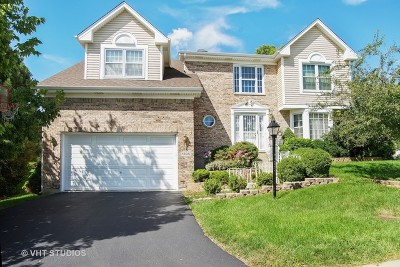Hoffman Estates Single Family Home For Sale: 1595 McCormack Drive
