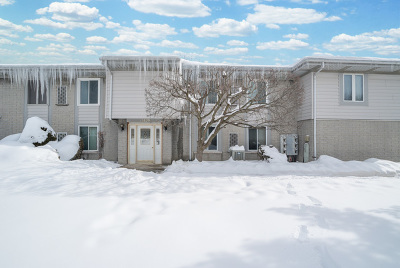 Orland Park Condo/Townhouse For Sale: 15829 Orlan Brook Drive #28