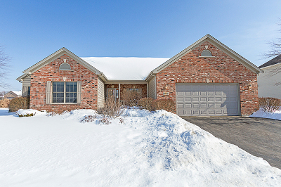 Hampshire Single Family Home For Sale: 807 Kathi Drive