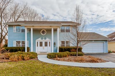 Glen Ellyn Single Family Home For Sale: 65 Exmoor Avenue