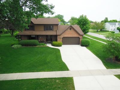 Carol Stream Single Family Home New: 1211 Lakeside Lane