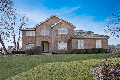 Homer Glen Single Family Home For Sale: 16925 Burr Oak Drive