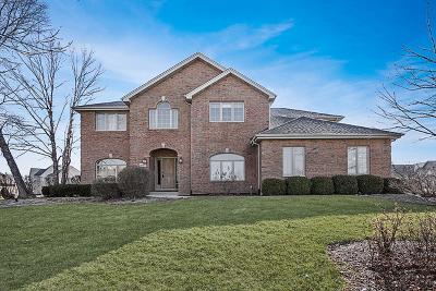 Homer Glen Single Family Home For Sale: 16925 Burr Oak Drive