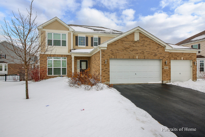 Bolingbrook Single Family Home For Sale: 516 Regal Lane