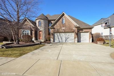 Naperville IL Single Family Home New: $784,900